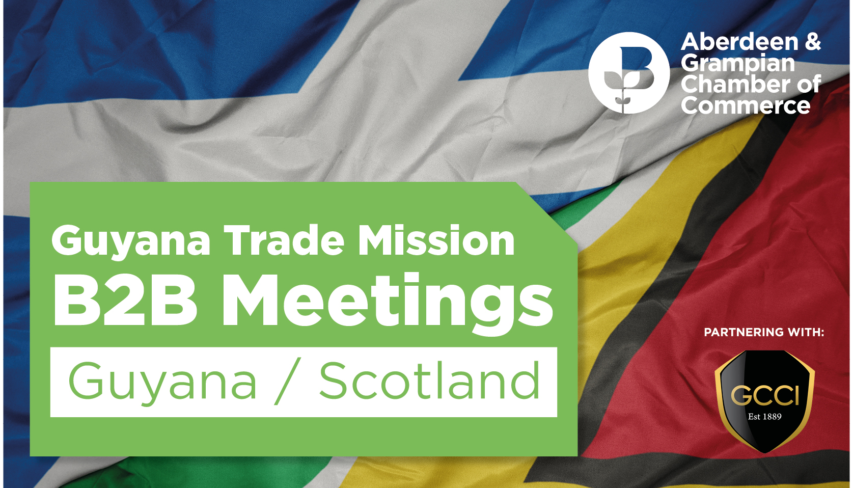 Guyana Trade Mission - B2B Meetings